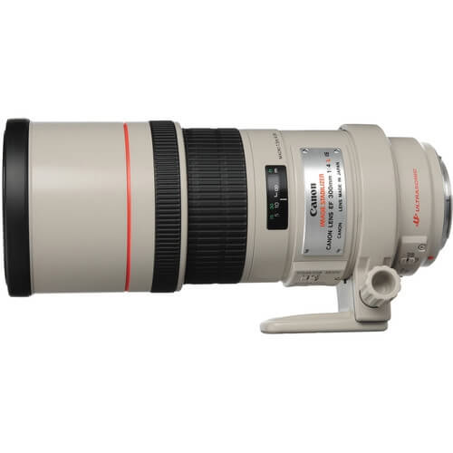 Canon 300mm f/4L IS rental